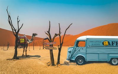 desert, sand dunes, travel concepts, dried trees, camel, pointers