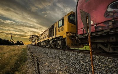 locomotive, railroad, dawn, new zealand