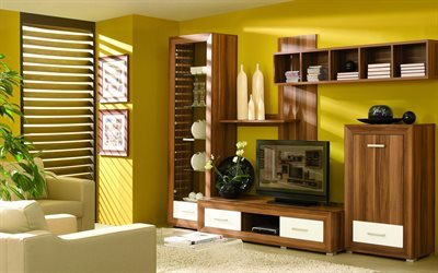 upholstered furniture, tv, wardrobe