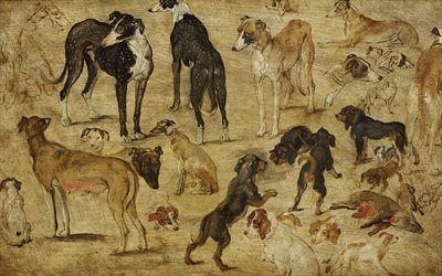 sketches of dogs, flemish painter, jan brueghel, 1616