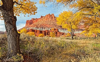 autumn landscape, utah, usa