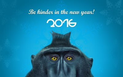 2016, new year, year of monkey