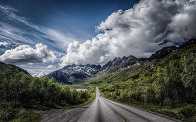 mountains, trees, road, lofoten archipelago, norway