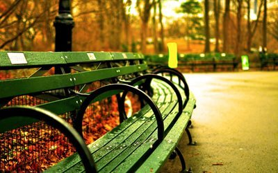 central park, new york, benches