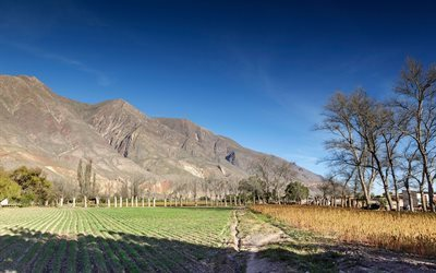 farmland, valley of quebrada de umaoka, argentina