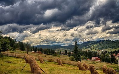 hay, forest, ukraine, carpathians, mountain landscape, bukovel