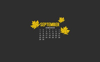 2019 September Calendar, gray background, minimalism art, September 2019 calendar, autumn, yellow leaves