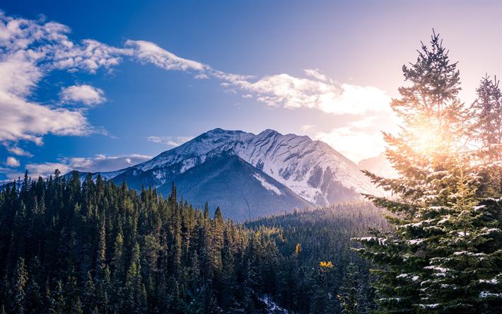 Download Wallpapers 4k Banff Winter Mountains Forest Banff National Park Canada Alberta For Desktop Free Pictures For Desktop Free