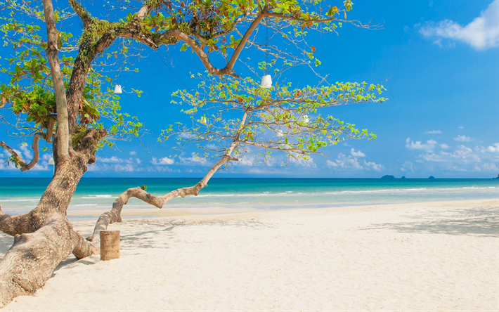Tropical Island Beach Romantic Places White Sand Seascape Summer Relax