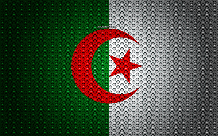 Flag of Algeria, 4k, creative art, metal mesh texture, Algerian flag, national symbol, Algeria, Africa, flags of African countries