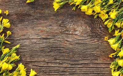 yellow flower frame, yellow daffodils, dark wooden background, wooden texture, spring flowers