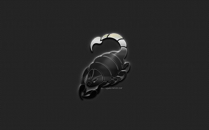 Scorpio zodiac sign, metal Scorpio sign, Scorpio Horoscope sign, metal style, metal