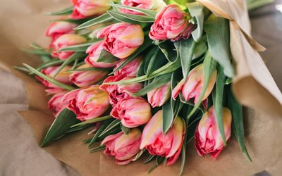 bouquet of pink tulips, spring flowers, tulips, beautiful pink bouquet, beautiful flowers