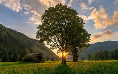 Ramsau, sunset, summer, beautiful nature, meadows, Austria, Europe