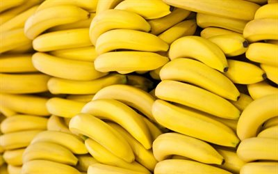 bananas, macro, fruits, ripe bananas, bunch of bananas, tropical fruits, fresh fruits