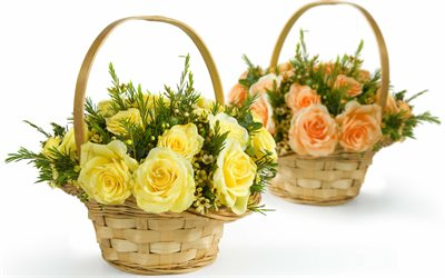baskets with roses, yellow roses, baskets with flowers, orange roses, beautiful flowers, roses