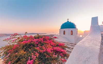 Santorini, Aegean Sea, Oia, Bougainvillea, church, flower bush, romantic places, sunset, evening, Mediterranean Sea, Greece