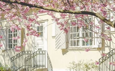 porch, wrought iron railings, interior, cherry blossoms