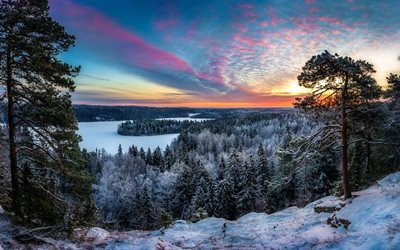 sunset, evening, forest, river, winter landscape, snow, winter, finland