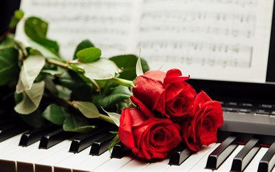 piano, piano keys, flowers, red roses