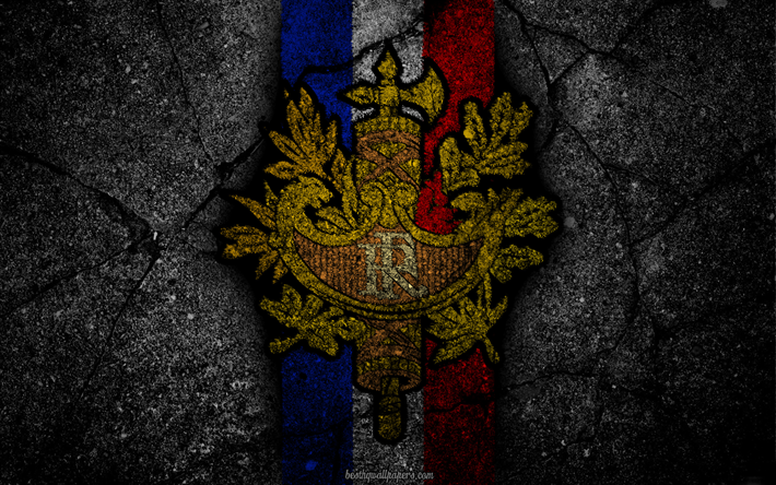 Coat Of Arms France French Grunge Flag