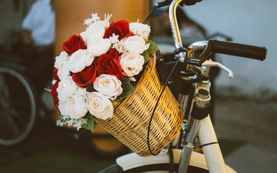 bouquet of roses in a basket, wedding bouquet, red roses, white roses, flowers on a bicycle