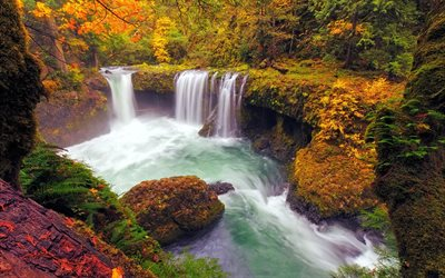 waterfall, lake, autumn, yellow trees, autumn landscape, forest, autumn waterfall