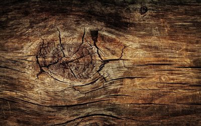 cracked wooden texture, close-up, horizontal wooden texture, brown wooden background, wooden textures, brown backgrounds, wooden backgrounds, brown wood