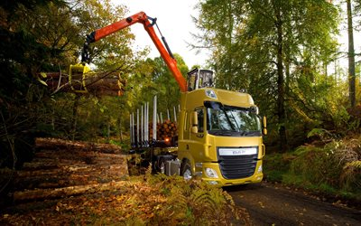 DAF CF, 2017, wood transportation, forest, truck mounted crane, timber carrier, Euro6, DAF CF 510 FTR
