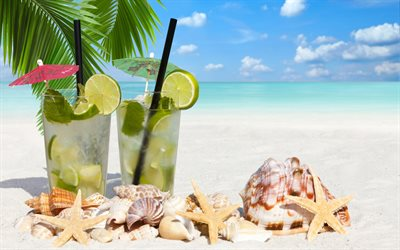 tropical beach, cocktails, Mojito, mint, summer cocktails, sea, seashells