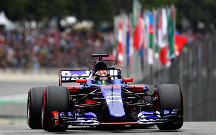 Download Wallpapers Brendon Hartley 4k Racing Drivers Toro Rosso