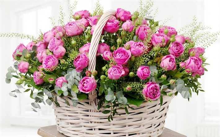 basket of roses, pink roses, basket of flowers, roses