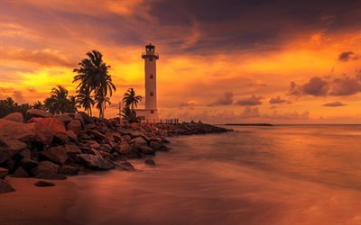 Lighthouse, palm trees, sunset, evening, beach, ocean, Sri Lanka