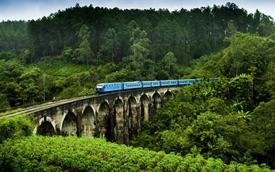 Sri Lanka, railway, bridge, train, plantation