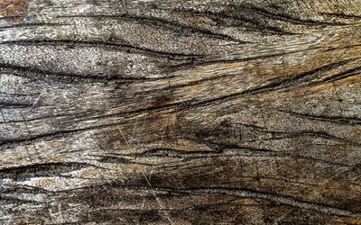 wooden cracked texture, 4k, wooden backgrounds, macro, wooden textures, brown backgrounds, brown wood
