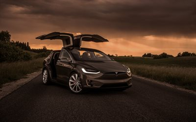 Tesla Model X, 2019, exterior, front view, new gray Model X, electric crossover, door wings, American electric cars, Tesla