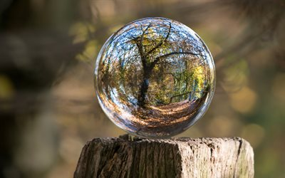 glass ball, bokeh, stump, blur, autumn, tree reflection