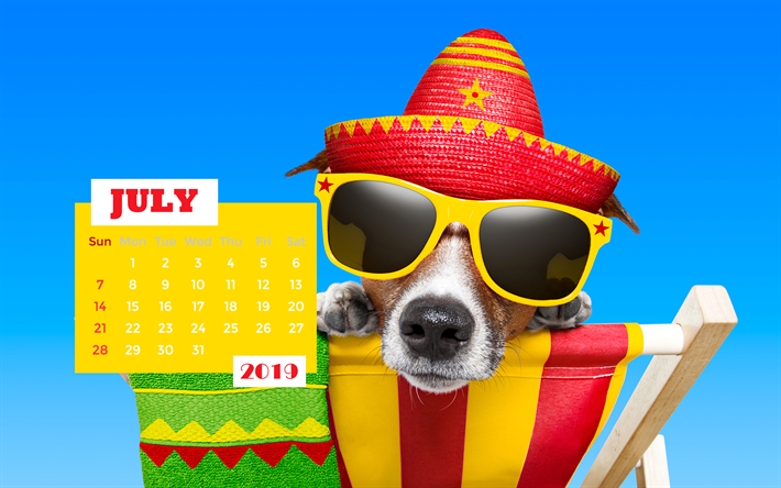 July 2019 Calendar, 4k, summer, funny dog, 2019 calendar, July 2019, creative, July 2019 calendar with dog, Calendar July 2019, dog on beach, 2019 calendars