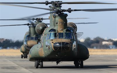 Boeing CH-47 Chinook, CH-47JA, heavy military transport helicopter, Japan Ground Self-Defense Force, japanese military helicopters, JGSDF, Japanese Army