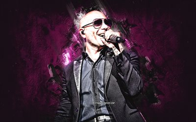 Pitbull, american rapper, portrait, purple stone background, creative art, Armando Christian Perez Acosta