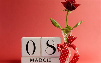 rose, vase, gift, 8 march, march 8, troyanda, podarunok