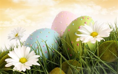 krashanki, easter eggs, easter backgrounds, chamomile, easter