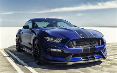shelby gt350, tuning, ford mustang, blue mustang
