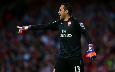 David Ospina, 4k, goalkeeper, footballers, Arsenal, The Gunners, soccer, Premier League