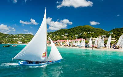 Caribbean, tropical islands, sailboats, flag of Grenada, beach, palm trees, Grenada