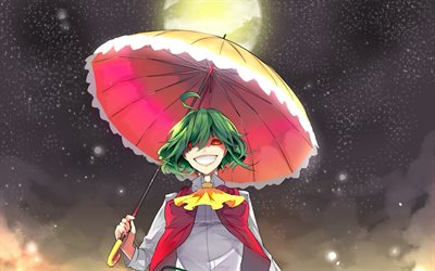Kazami Yuuka, Touhou, Phantasmagoria of Flower View, portrait, anime characters, japanese manga