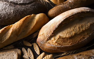 fresh bread, ears of wheat, bread concepts, baked goods, bread