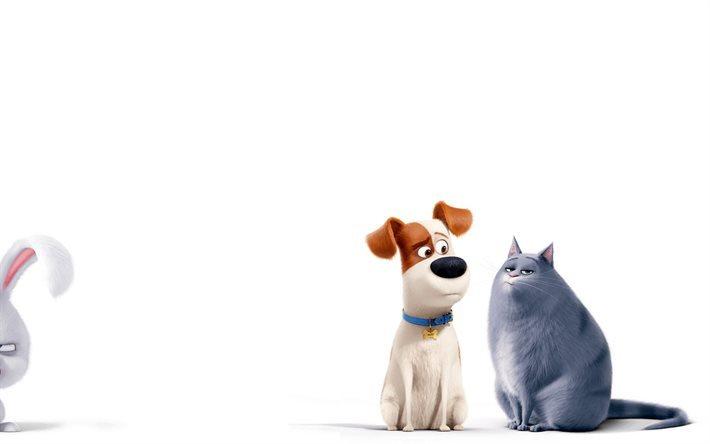 Fondos De Animales Animados: Download Wallpapers The Secret Life Of Pets, 2016, Max