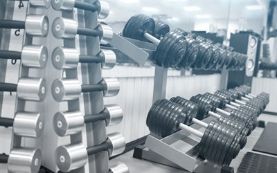 dumbbells, gym, workout, dumbbell rack