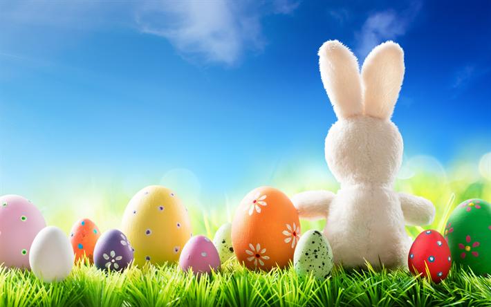 Ostern Hintergrundbilder Kostenlos herunterladen hintergrundbild easter eggs white rabbit frühling